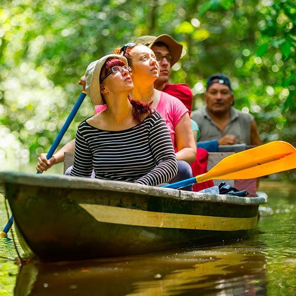 Descubre Amazona